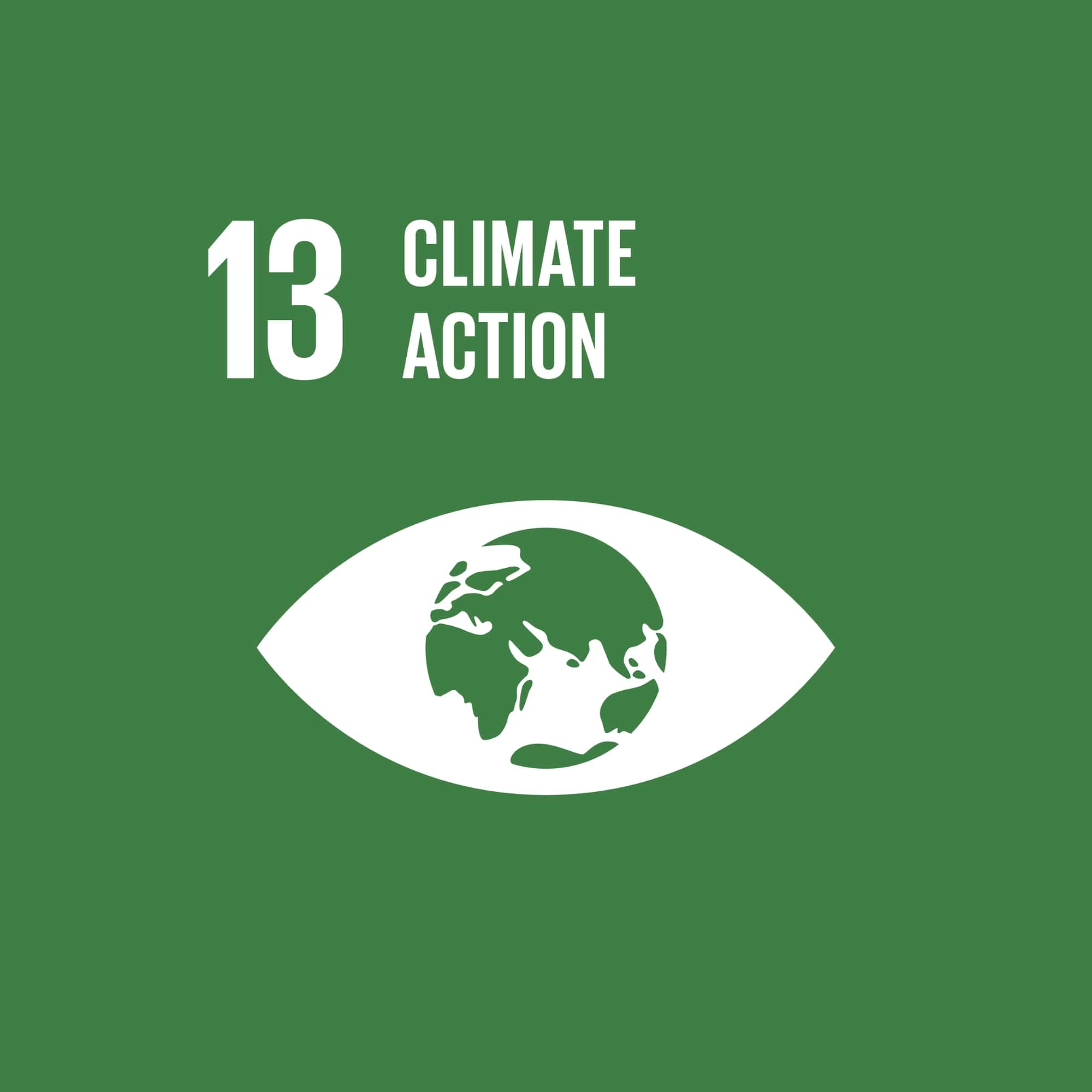 GLOBAL SUSTAINABILITY : CLIMATE ACTION